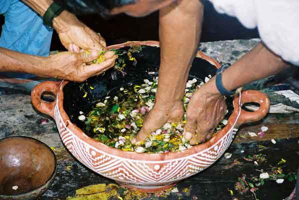 Baño De Tina Con Hierbas:Banos De Flores Para La Buena Suerte