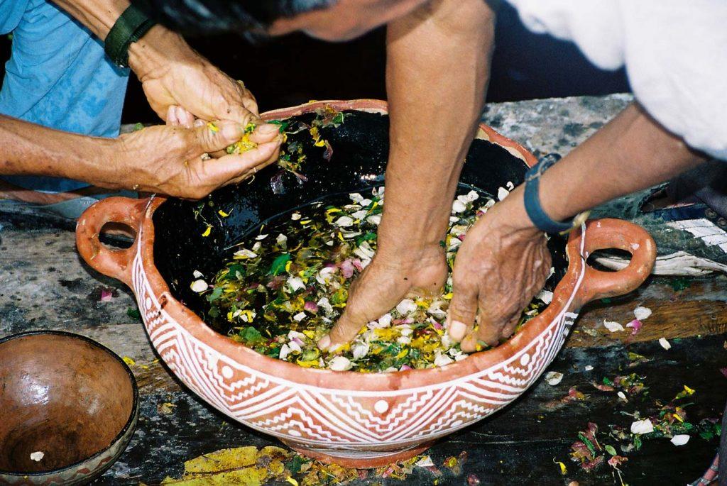 Preparation of the ritual flowering bath. Photo: F. Sammarco