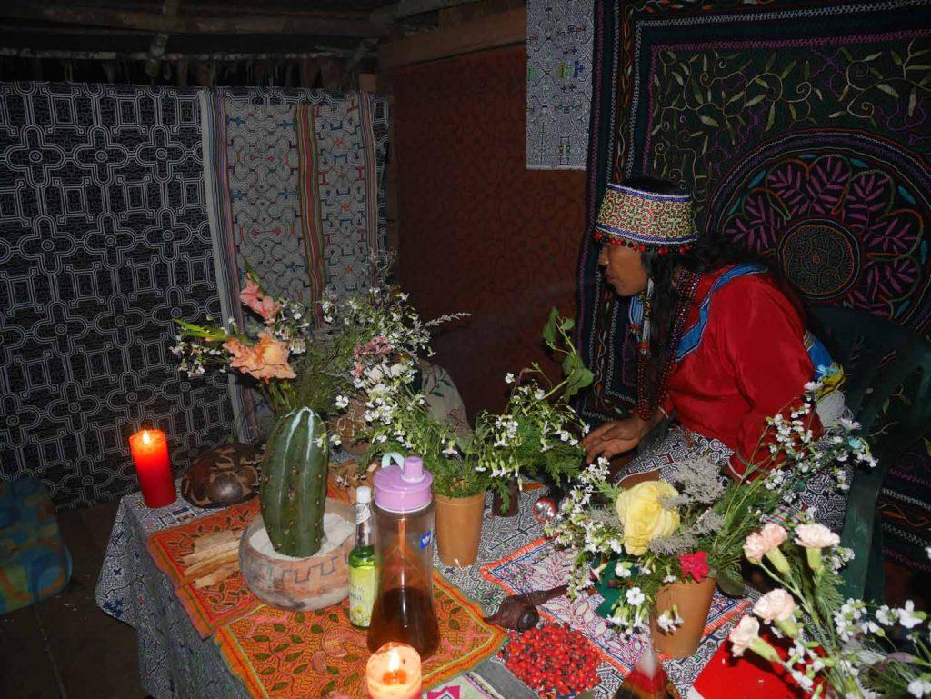 San Pedro (Huachuma) ceremony with Shipibo Maestra Celia, in our centre in the jungle, near Iquitos (Peru).