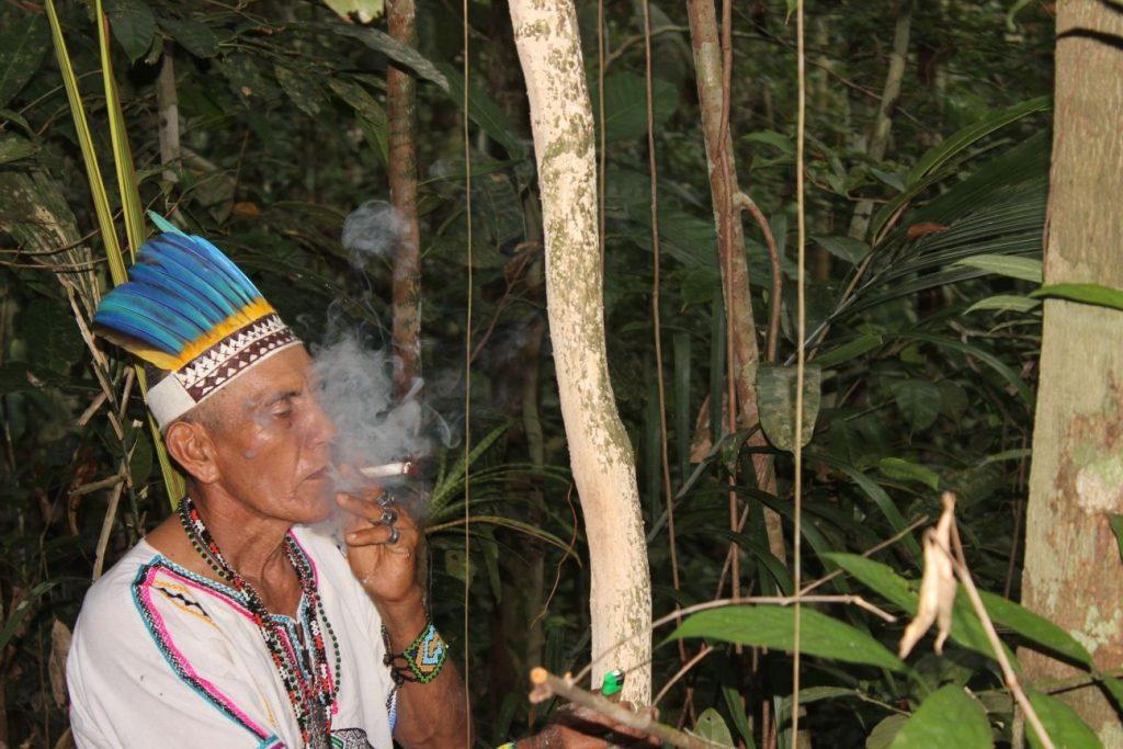 Master shaman Don Sixto, in the jungle of the Ayahuma Ayahuasca retreat and shamanic apprenticeship venue