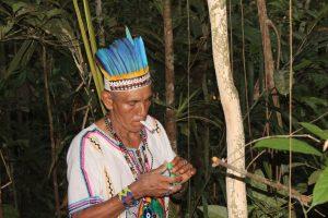 Don Sixto in the jungle surrounding the Ayahuma venue. Photo: C. Hoyos.