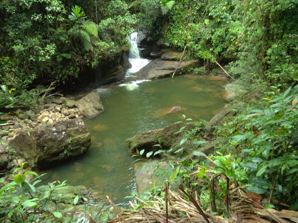 Canalendre waterfall, in the Putumayo jungle. Photo © S. Imbachi