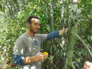 Daytime Camalonga ritual. Drinking a cup of Camalonga tea, by a Master tree, in the jungle. Photo: Trenton Doyle.