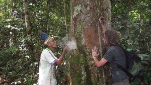 Shamanic ritual with the apprentice, before a teacher tree. Photo courtesy: C. Hoyos