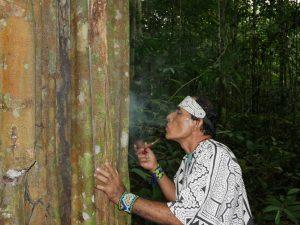 Paying homage to the Remocaspi master tree. Photo: C. Hoyos