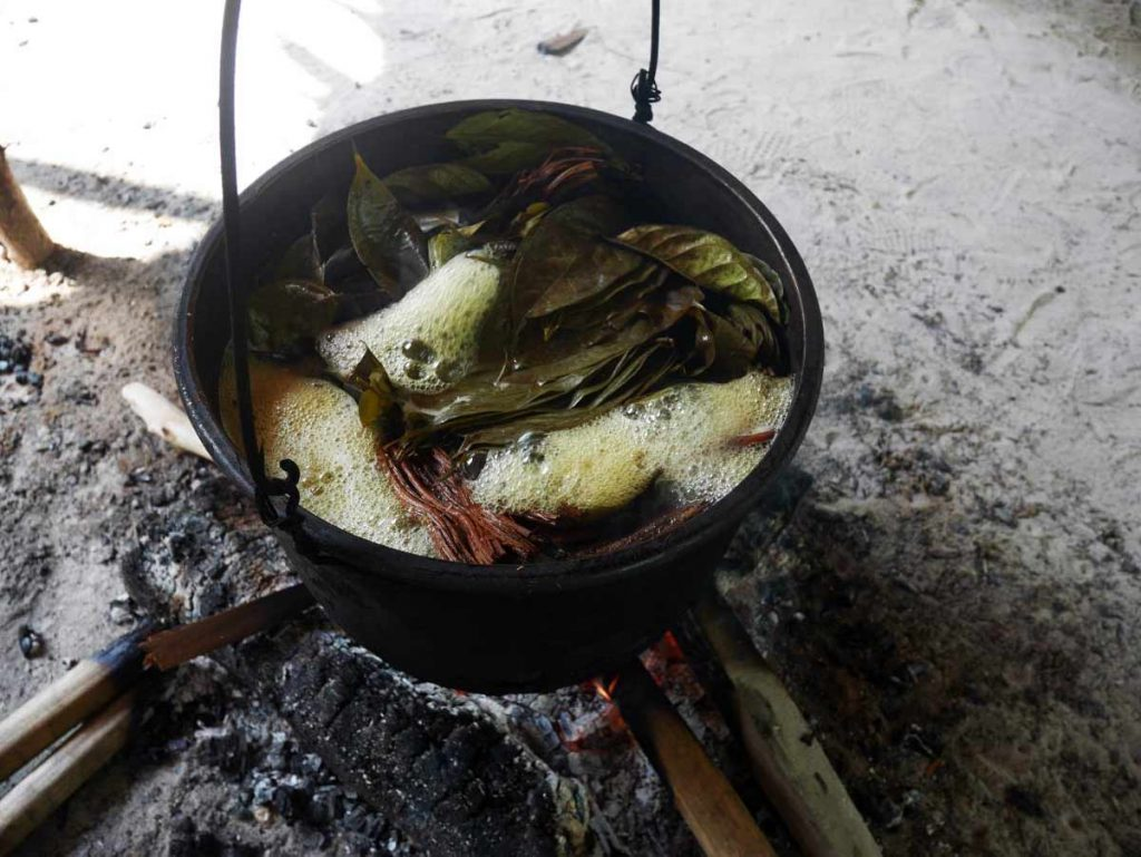 Ayahuasca cooking in our centre, in the Peruvian Amazon jungle