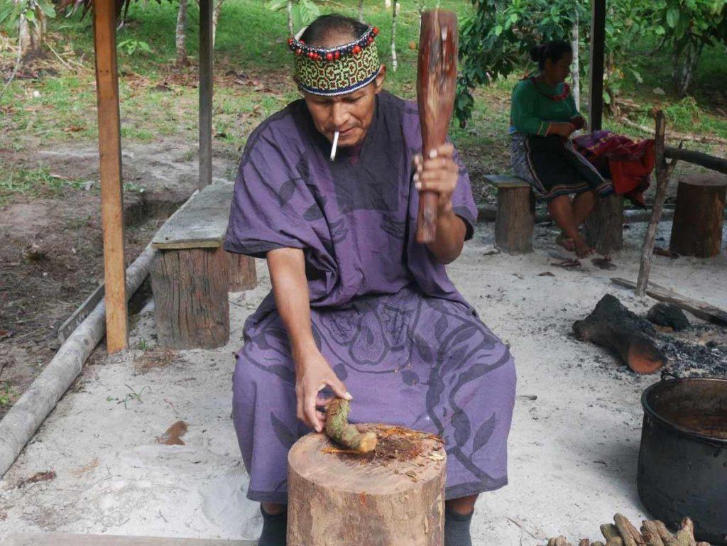 Shipibo Maestro Ronel, pounding Cielo ayahuasca vine cuts in preparation of the Ayahuasca brew