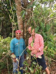 El Mundo Magico Ayahuasca retreat in the Peruvian Amazon, near Iquitos
