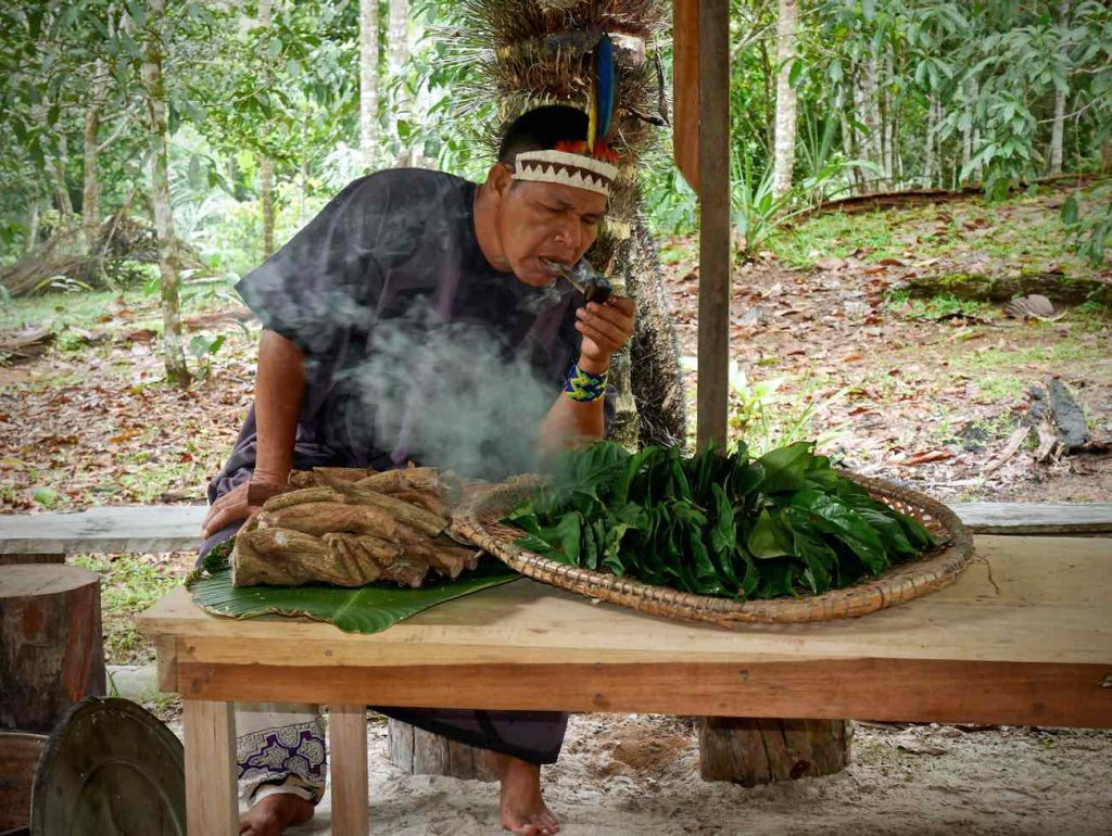 Don Armando blowing Mapacho smoke to the Chaliponga (Diplopterys cabrerana) leaves and Cielo ayahuasca vine cuts, in preparation of the Ayahuasca brew.