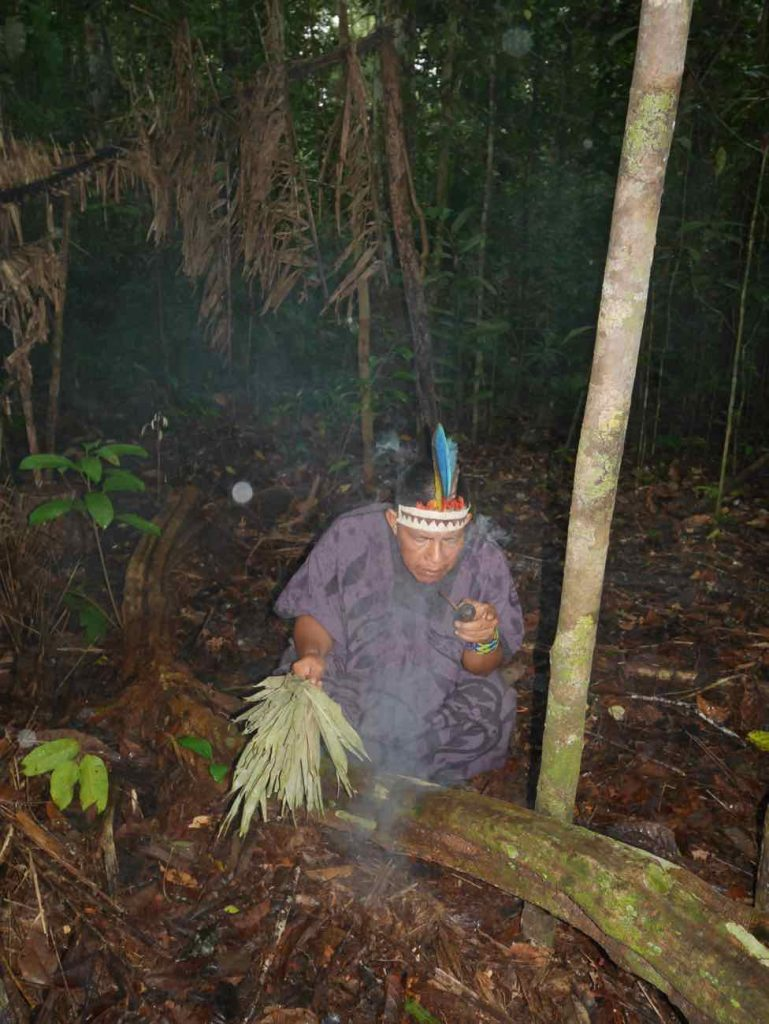 Suni ayahuasca ritual with Don Armando in the jungle surrounding our centre